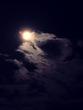 月夜 シンプルA