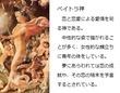 千年巫女の代理人 ペイトラ神