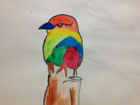 虹色の鳥。