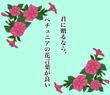 タイトル入③ ペチュニア (月野夜様の小説タイトルをお借りして)
