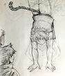 「魔法剣士ガイア」イラスト
