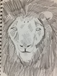 顔面一面ライオン!