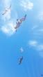 カモメ漂う空の下