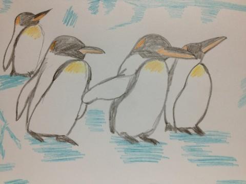 集団ペンギン。