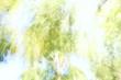 風のラクガキ9
