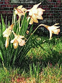 「胡桃の中の蜃気楼」春の訪れ 挿絵
