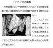 千年巫女の代理人 トナカイ肉の燻製