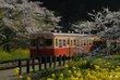 春の小港鉄道