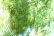 風のラクガキ10