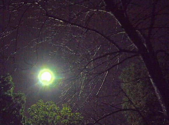 雨に濡れ、神戸に祈る。