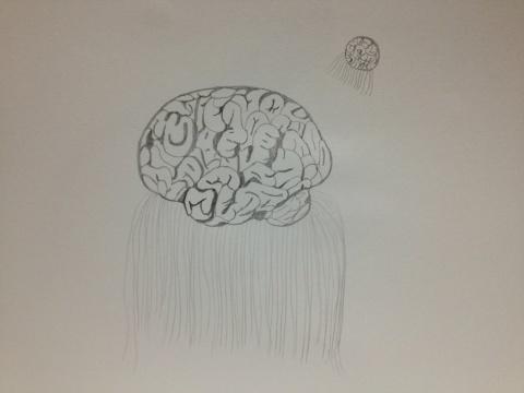 脳クラゲ。