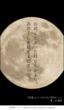 『茶器×エロスのための習作』表紙画像