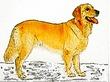 千年巫女の代理人 大犬リッポー