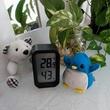 アデリーとギンガムと温湿計