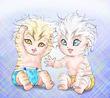 twins中