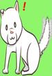 シロ(雑種)尻尾振り