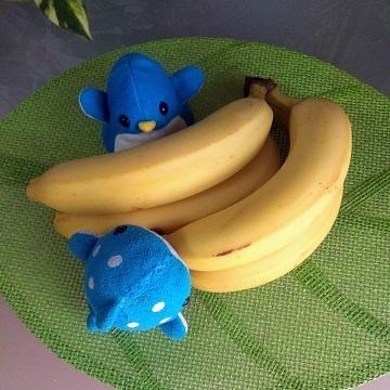 アデリーとジンベーとバナナ