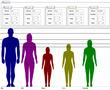 身長対比2