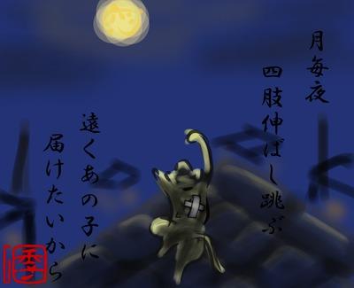 【季語でGO!】猫の恋(URAさま)