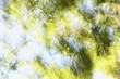 風のラクガキ14