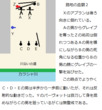 千年巫女の代理人 路地の血闘1.5