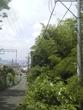 山入り口2