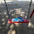 アデリーとジンベーと公園