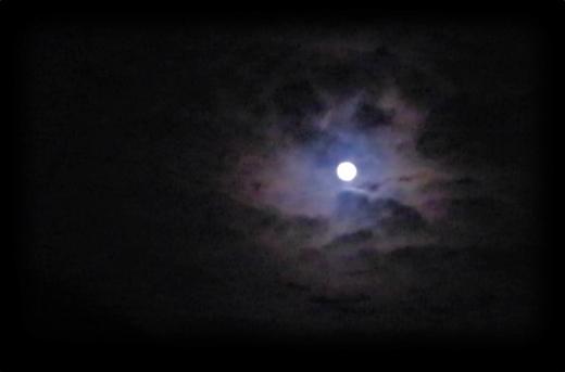 はぐるまどらいぶ。月。