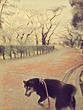 イヌのいた景色1