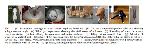 猫は個体でも液体でもあることを証明する研究の参照図