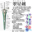 「時き継幻想 フララジカ」挿絵 翠星剣
