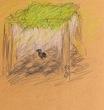 藤棚の下の鴉