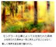 千年巫女の代理人 放火された森林