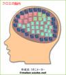 クロエ 脳内メーカー