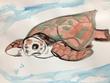 海亀さん。