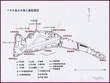 ベティオ島 地図