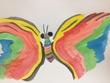 綺麗な羽を持つ蝶々。