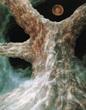『樹』1986( 油彩 / 100号 )