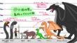 動物の大きさ