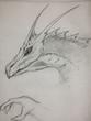 ドラゴンラフ 鉛筆5