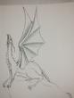 ドラゴンラフ 鉛筆3