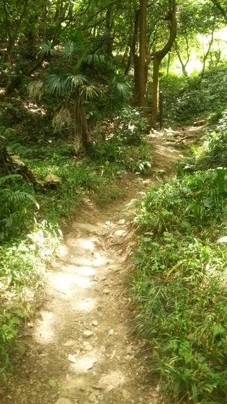 『山の小径』参考写真