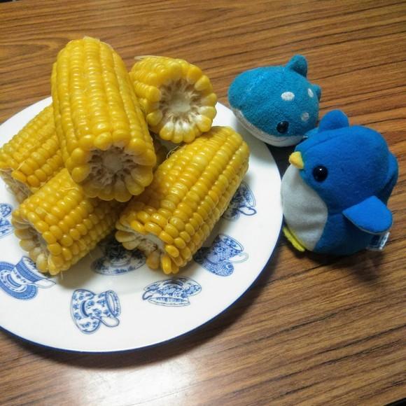 アデリーとジンベーと玉蜀黍