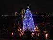 お台場、クリスマスツリー