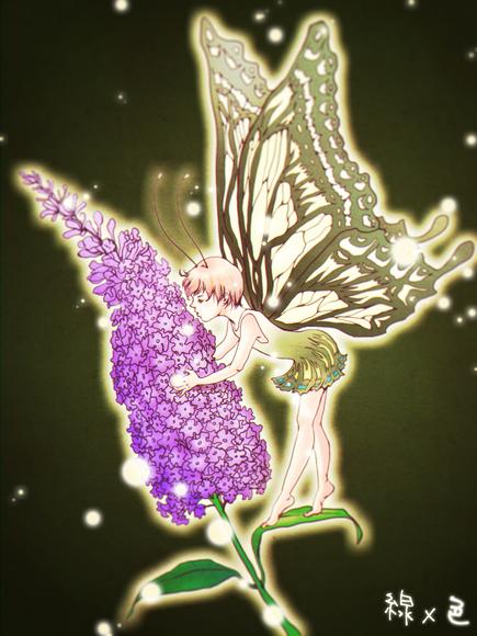 【線×色】sho-koさんの線画「バタフライブッシュ」を色塗りした。