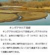 千年巫女の代理人 キングアタ川下流域風景