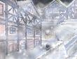 雪の日の水配り