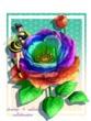 【線画×彩色◆コラボ祭Ⅱ】sho-koさん