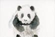 パンダの子どもの絵
