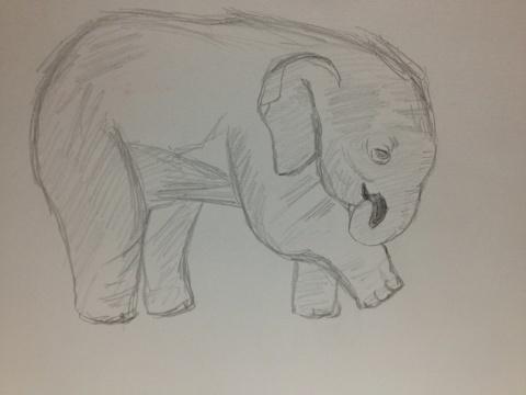 小象? 小僧? 子ゾウ。